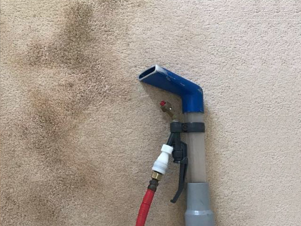 carpet and upholsery cleaning dunmow